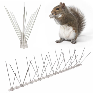 spikes for squirrel