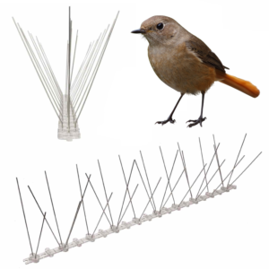 bird spikes for wrens