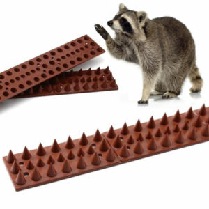 best raccoon spikes